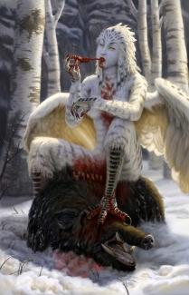 Snow Harpy